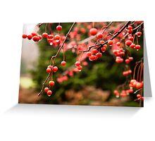 Raindrops on Berries. Vivid holiday card. Greeting Card