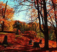 Autumns Rest by Kerri Ann Crau