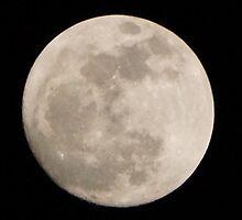 Moon by Scott Dovey