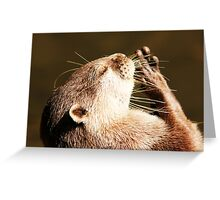 Say a Little Prayer For Me! Greeting Card