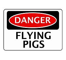 DANGER FLYING PIGS, FUNNY FAKE SAFETY SIGN Photographic Print