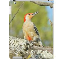 Woodpecker (iPad Case) iPad Case/Skin