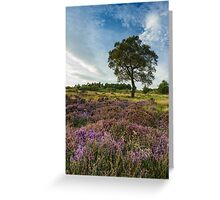Heather and Hawthorn Greeting Card