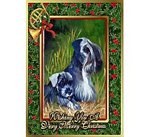Kerry Blue Terrier Dog Christmas Photographic Print