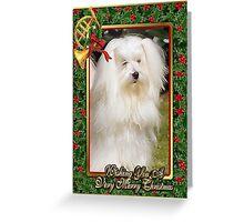 Maltese Dog Christmas Greeting Card