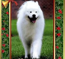 Samoyed Dog Christmas by Oldetimemercan