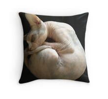 Naked Kitty Throw Pillow