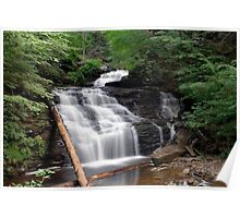 Mohican Falls in Summer Splendor Poster