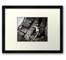 Sophie's Rocky Escape 2 Framed Print