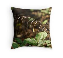 A Speck In God's Eye Yet Precious In His Sight Throw Pillow