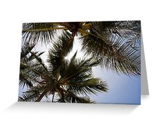 Blue sky sun and palms Greeting Card