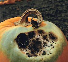 Rotting Halloween Pumpkin by JeffraWPhotos