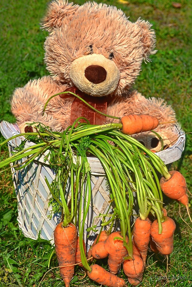 Collecting Carrots For Margaret by lynn carter