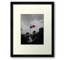 Panama Flag selective color Framed Print