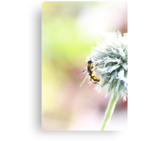 Global Foraging Canvas Print