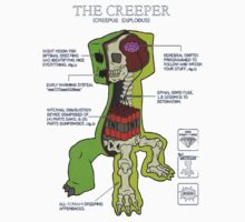 Creeper Anatomy Minecraft by extrise