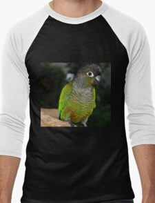 Fabulous Feathers Men's Baseball ¾ T-Shirt