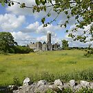 Quin Abbey County Clare Ireland Landmark Scenic Landscape by Noel Moore Up The Banner Photography