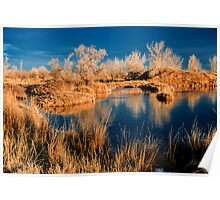 Golden Sawhill Ponds Morning Poster
