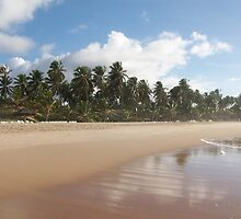 Have you been to Bahia? by mbaialardi