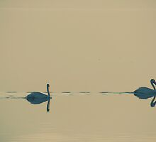 I'm Sailing Right Behind by Laurie Search