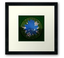 ©DA Eye Fish I Framed Print