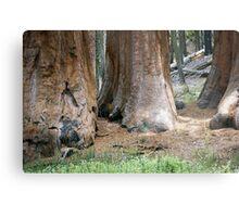 Yosemite Giants Metal Print