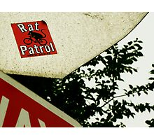 Rat Patrol Photographic Print
