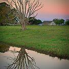 Thornlands Farm (Australia) by Karen Duffy