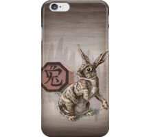 Year of the Rabbit by Stephanie Smith (for dark shirts) iPhone Case/Skin