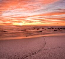 The colour of morning by Chris Brunton