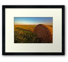 Hay in the Field Framed Print
