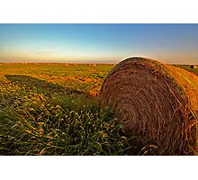 Hay in the Field Photographic Print