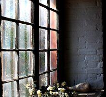 Flowers in the window. by Ian Ramsay