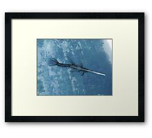 Fish or Fowl Framed Print
