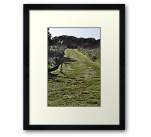 Moonah Links Series #96 Framed Print