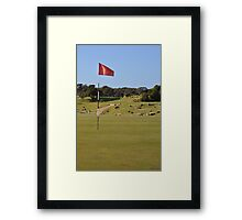 Moonah Links Series #105 Framed Print