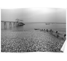 Selsey Lifeboat Pier and Beach Poster