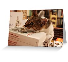 Cat in Literature! Greeting Card