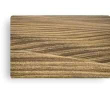 Rolled Wheat, North Yorks Moors National Park Canvas Print