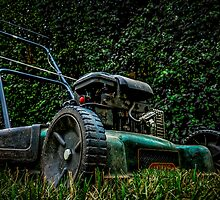 the lawnmower  by Tom Klausz