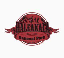 Haleakala National Park, Hawaii Baby Tee