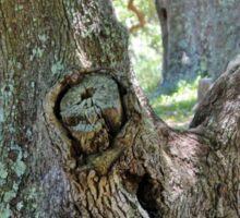 Spooky Face In A Tree Sticker