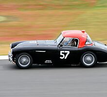 Austin Healey No 57 by Willie Jackson