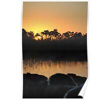 Sunrise on the Okavango Delta Poster