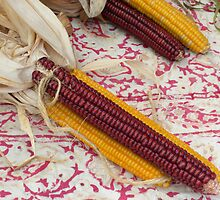 Abenaki Flint Corn  by Karla  Cyr