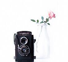 vintage rose by Ingz