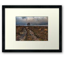 Norland Moor Framed Print