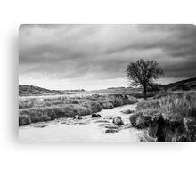 Stormy Moors Canvas Print