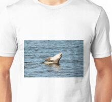 Dolphin Clapping  Unisex T-Shirt